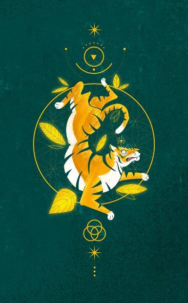 tiger - power animals / illustration